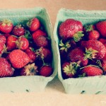 fresh strawberries in a box from the CSA