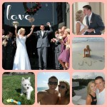 wedding honeymoon and new puppy