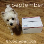 september foodie pen pals