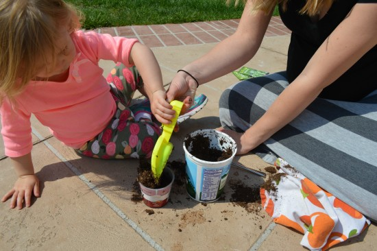 celebrating earth day with high mowing organic seeds and stonyfield yogurt