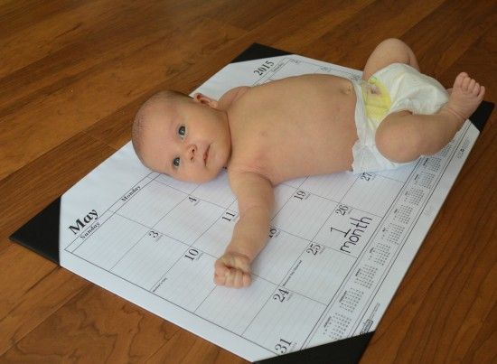baby 1 month photo shoot on calendar