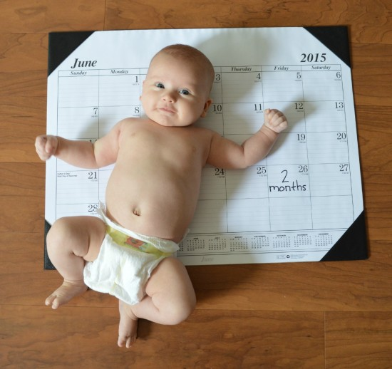 month by month baby photo on calendar