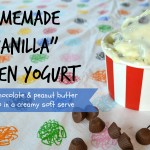 homemade banilla frozen yogurt