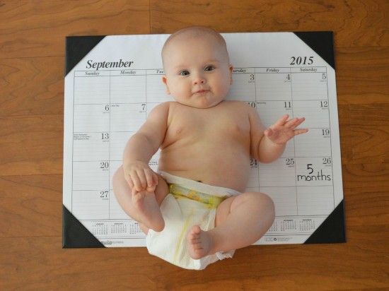 baby at five months