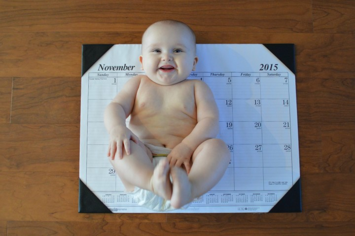7 month old baby photo shoot
