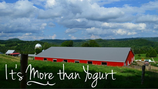 Stonyfield: It's More than Yogurt