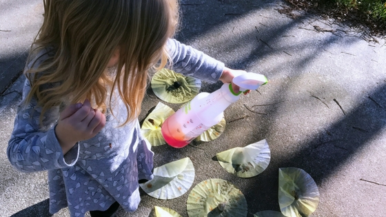 "Easy Turkey Craft your Kids will Love! Spraying coffee filters for the ""turkey tail"""