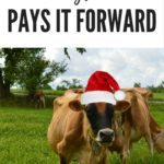 Paying it Forward with Stonyfield
